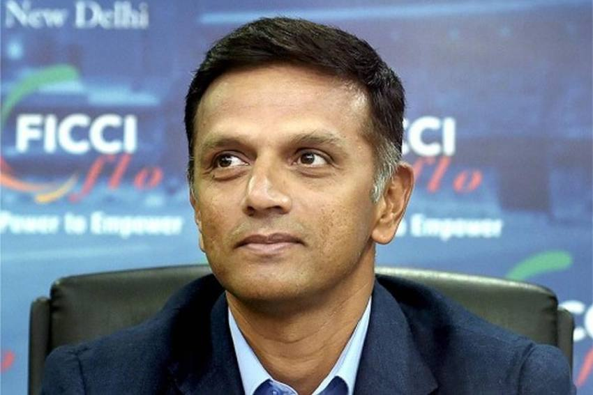 NCA Chief Rahul Dravid To Be Part Of BCCI's COVID Task Force