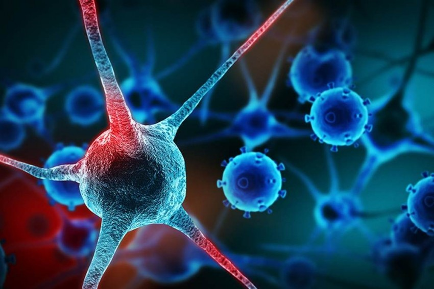 Cancer Research Day: Can Cell-free DNA Test Predict Cancer In An Individual?