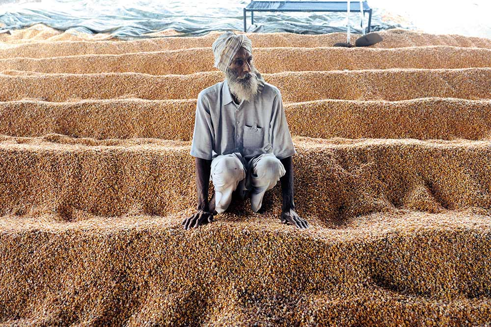 Food Bowl Goes Against The Grain | Outlook India Magazine