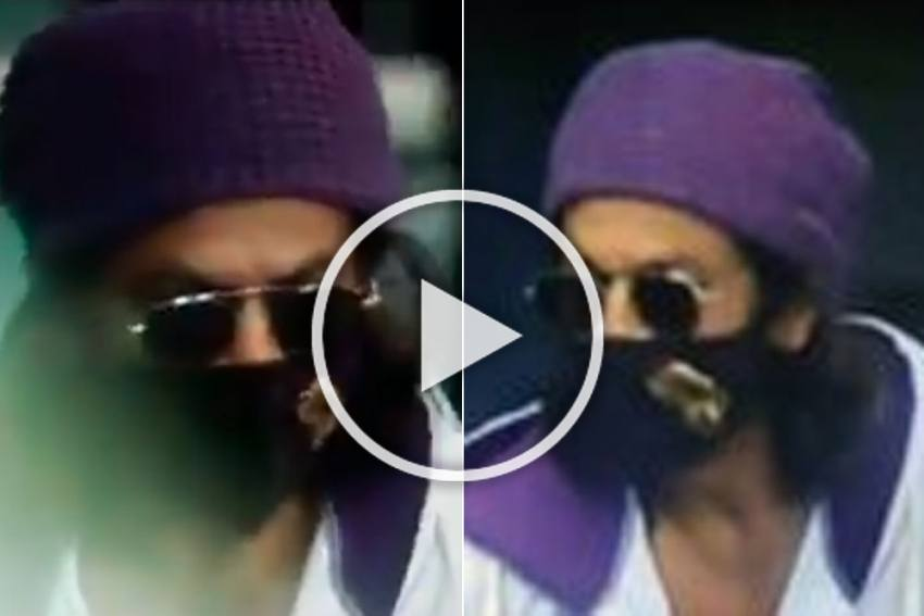 IPL 2020, RR Vs KKR: Shah Rukh Khan Cheers Kolkata Knight Riders To Victory, Fans Go Crazy - VIDEO
