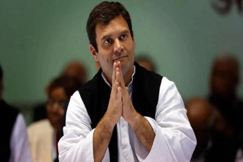 Rahul Gandhi Watches Bull-Taming Sport Jallikattu In Tamil Nadu