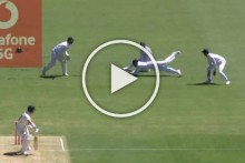 AUS Vs IND, 4th Test: Rohit Sharma Takes A Screamer To Send David Warner Back Early - WATCH