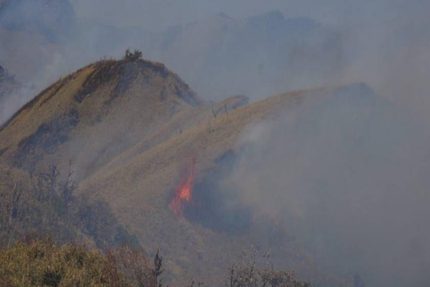 Nagaland's Dzukou Range Wildfire Under Control: Officials
