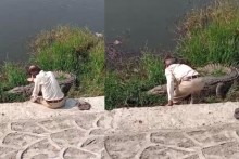 Shocking! Man In Gujarat Bows And Talks To Huge Crocodile, Act Caught On Camera