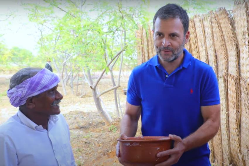 Rahul Gandhi Features In 'Village Cooking Channel', Tries Tamil Nadu's Mushroom Briyani
