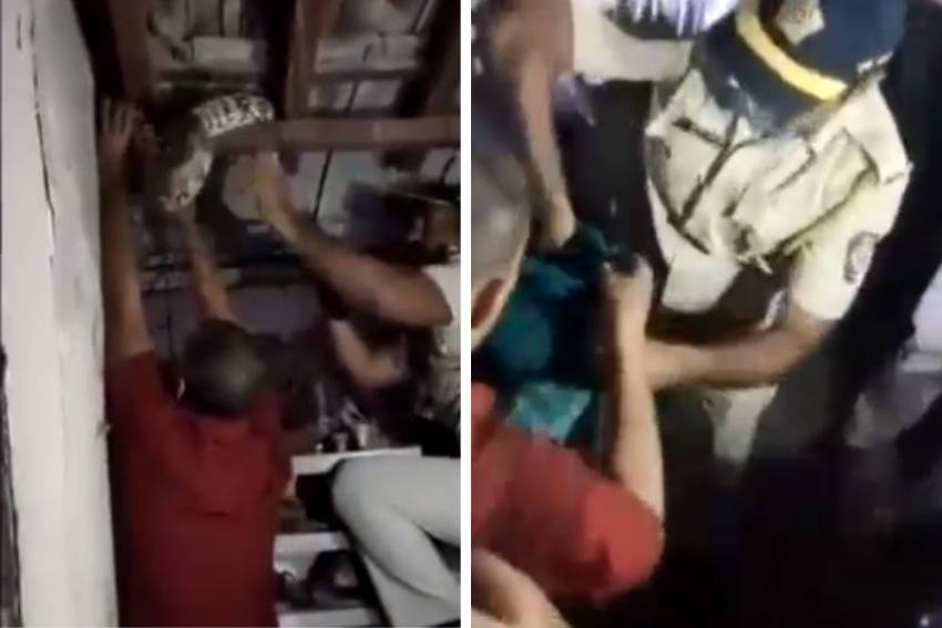 Watch: 6-Feet Long Python In Dharavi Home Removed By Brave Mumbai Cop