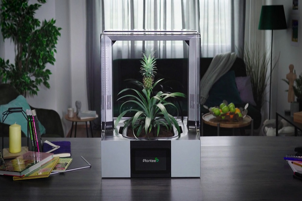 And Now… A Greenhouse For Your Living Room Table
