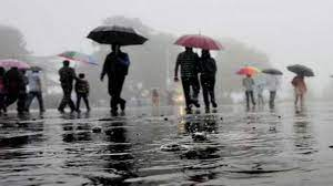 Kerala Rains: IMD Issues Orange Alert For 8 Districts Amid Incessant Downpour, Thunderstorms