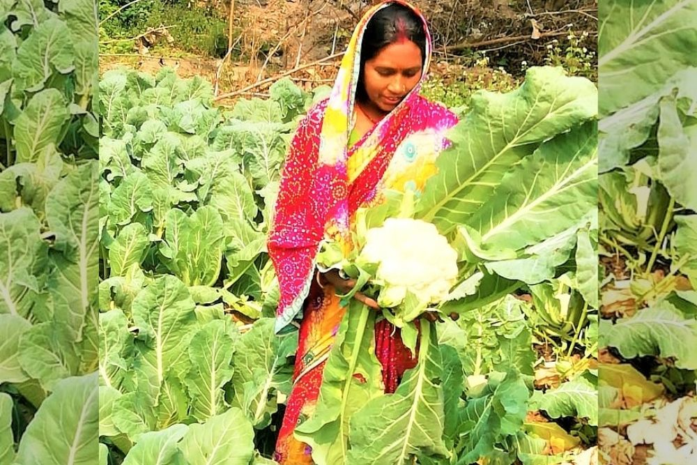 Grit, Determination: Inspiring Story Of A Woman Farmer