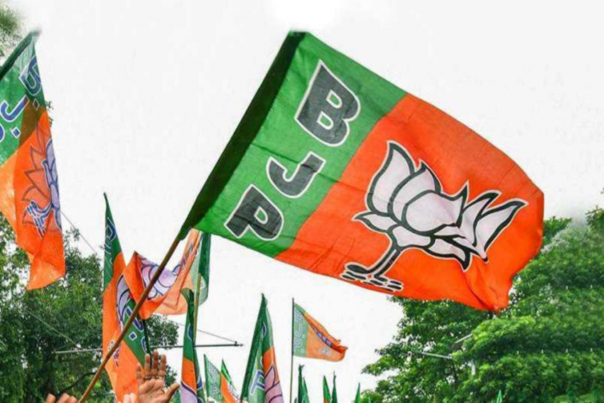 BJP Cannot Form Political Entity In Sri Lanka: Officials