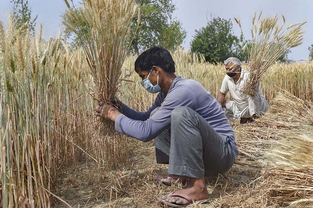 Budget 2021 Fails To Allay Farmers' Fears