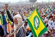 'Caged Parrot' Rajnath Singh Can Resolve Farmers' Crisis: BKU Chief Naresh Tikait