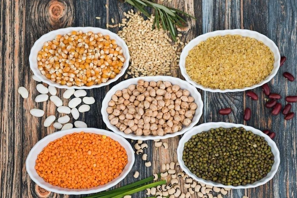 World Protein Day: Indians Get Only 70 Per Cent Of Their Daily Need