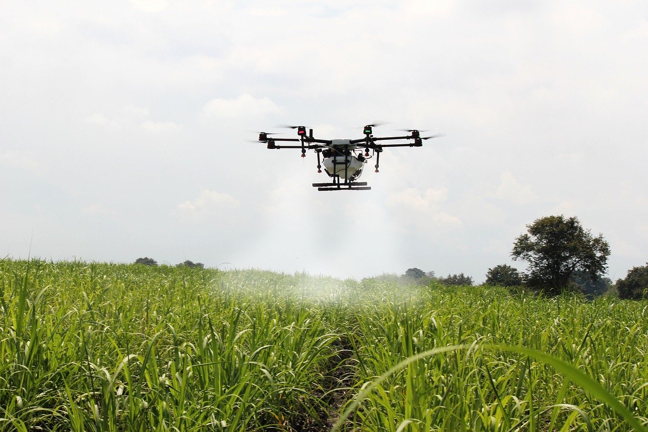 Not Just Monitor, Drones May Even Pluck Fruits