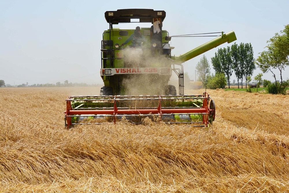 Agriculture Income, Rural Consumption Dropped In Kenya With Pvt Sector Entry, Says Study