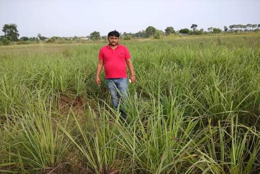 Can This Bihar Farmer Grow The 'World's Costliest Vegetable'?