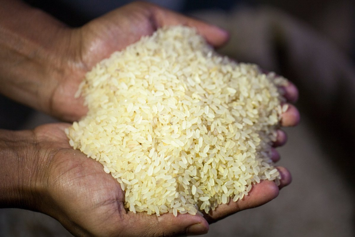 ICDS And Mid-Day Meal Scheme To Provide Fortified Rice From April
