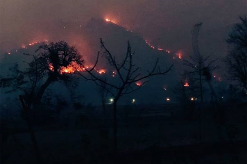 Simlipal Park Fire Under Control After Rainfall: Official