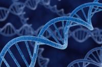 Genetic Disorders Among Children: Spot It Early