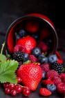 A Few Berries A Day Keeps The Doctor Away