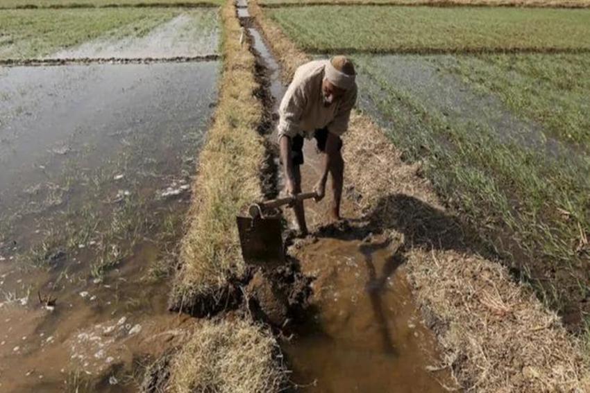 Nitish Kumar's Govt Scrapped APMC Act 14 Years Ago But Farmers In Bihar Still Languishing