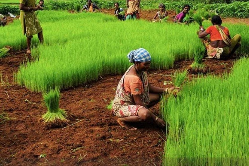 Skilling And Employment Of Women: A Priority For India's Progress