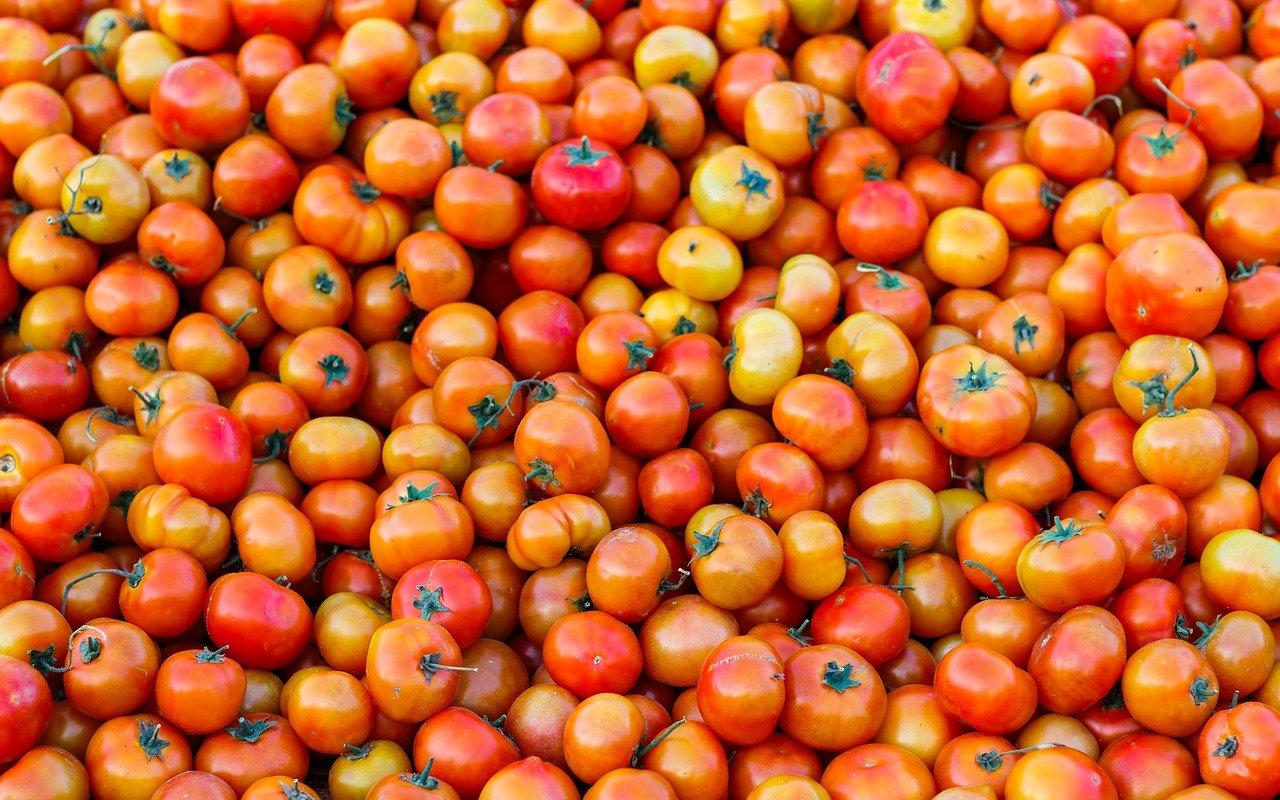 Why This Distress Sale Of Tomato, Potato In Kendrapara