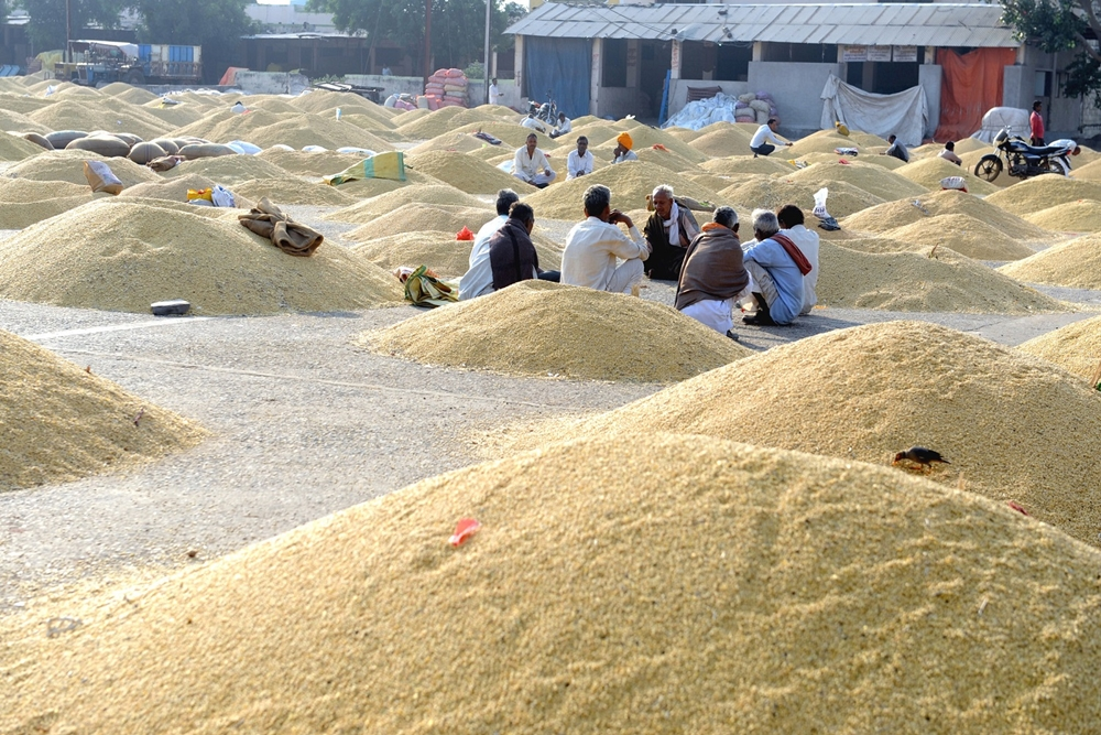 Punjab Imposes Strictures On Illegal Entry Of Wheat