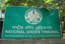 IPL 2021: National Green Tribunal Directs Centre To Regulate Extraction Of Groundwater For Cricket Matches