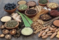 Ayurvedic Medicines: Caught Between The Classical, The Modern And The Pseudo-Modern