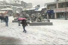 Rainfall In Shimla Breaks 42-Year-Old Record, Untimely Snow Wreaks Havoc On Apple Plantation