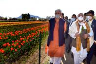 Tulip Festival Perfect Opportunity To Display Kashmir's Unparalleled Beauty: J&K Lt Governor Manoj Sinha