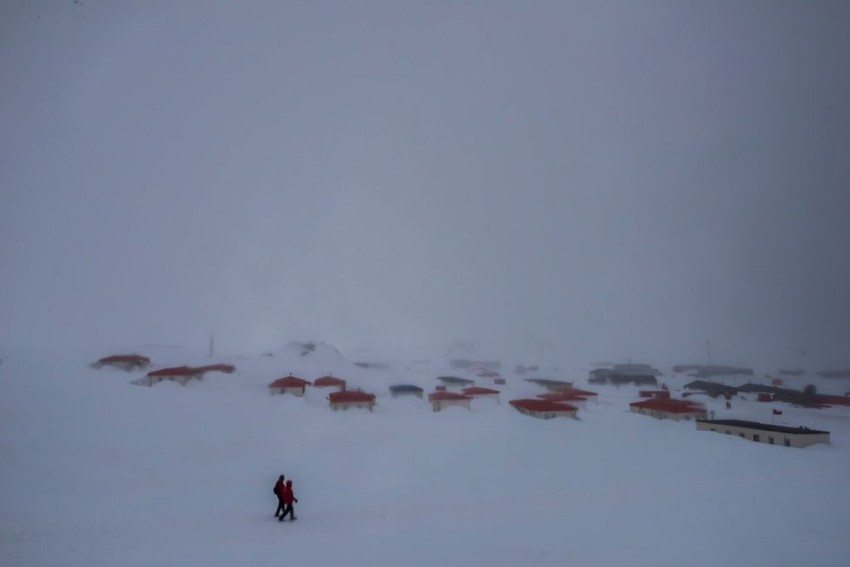Here's Why Before You Enter This Town In Antarctica, You Have To Remove Your Appendix