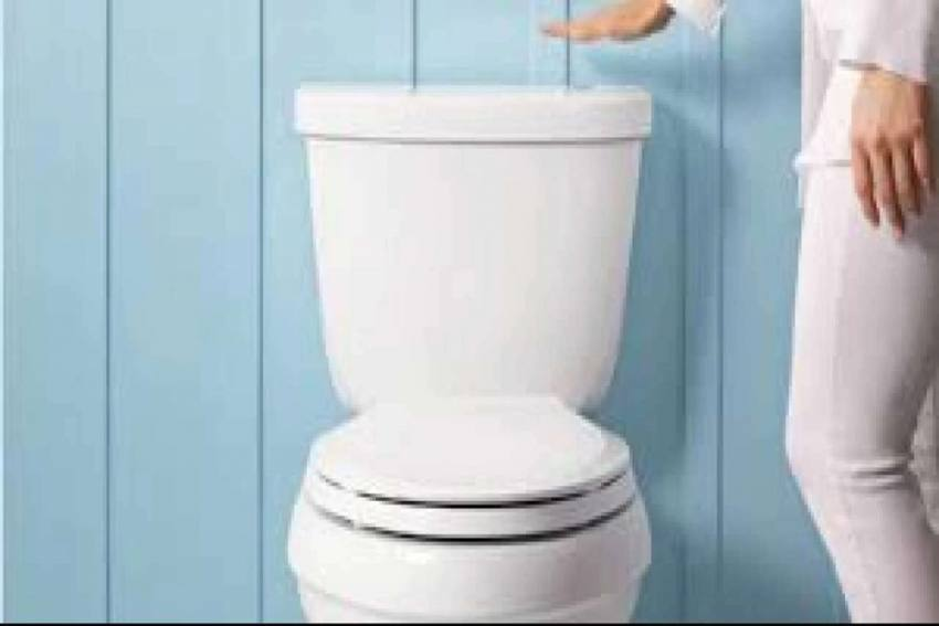 Fact Check: Can Covid Spread By Flushing Toilet? Find Out Truth Here