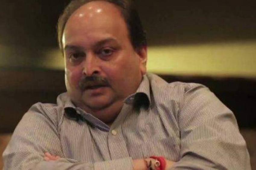Mehul Choksi Denied Bail By Dominica Magistrate