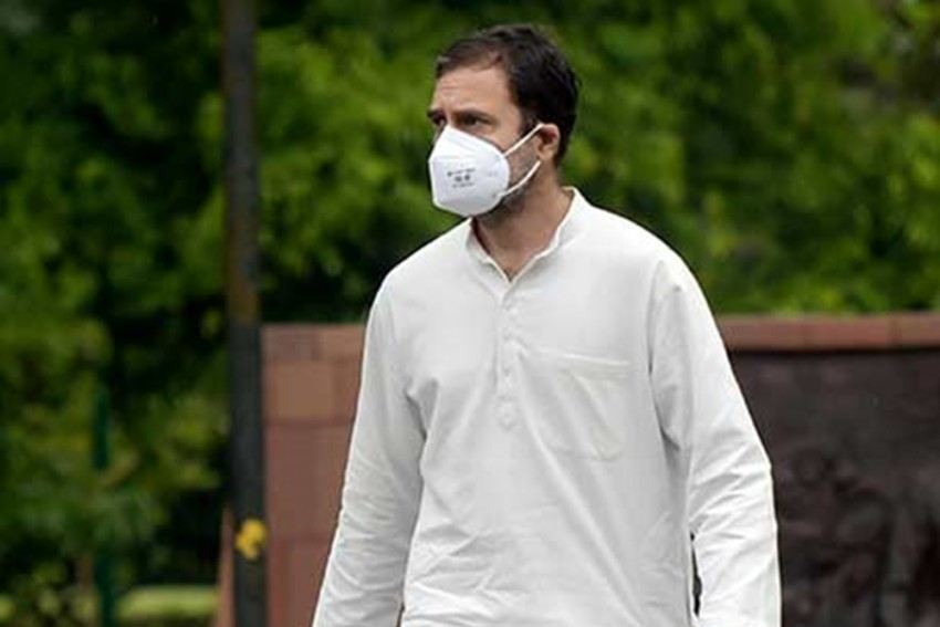 Rahul Gandhi A 'Pappu', A 'Vulture' Or The Voice Of Sanity?