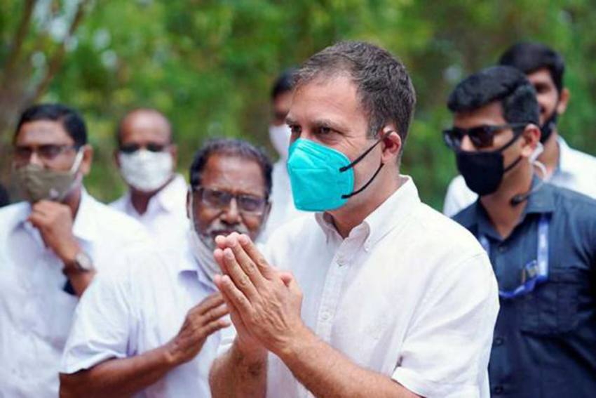 Assembly Polls 2021: Here's What Rahul Gandhi Can Learn From Mamata, Stalin And Vijayan