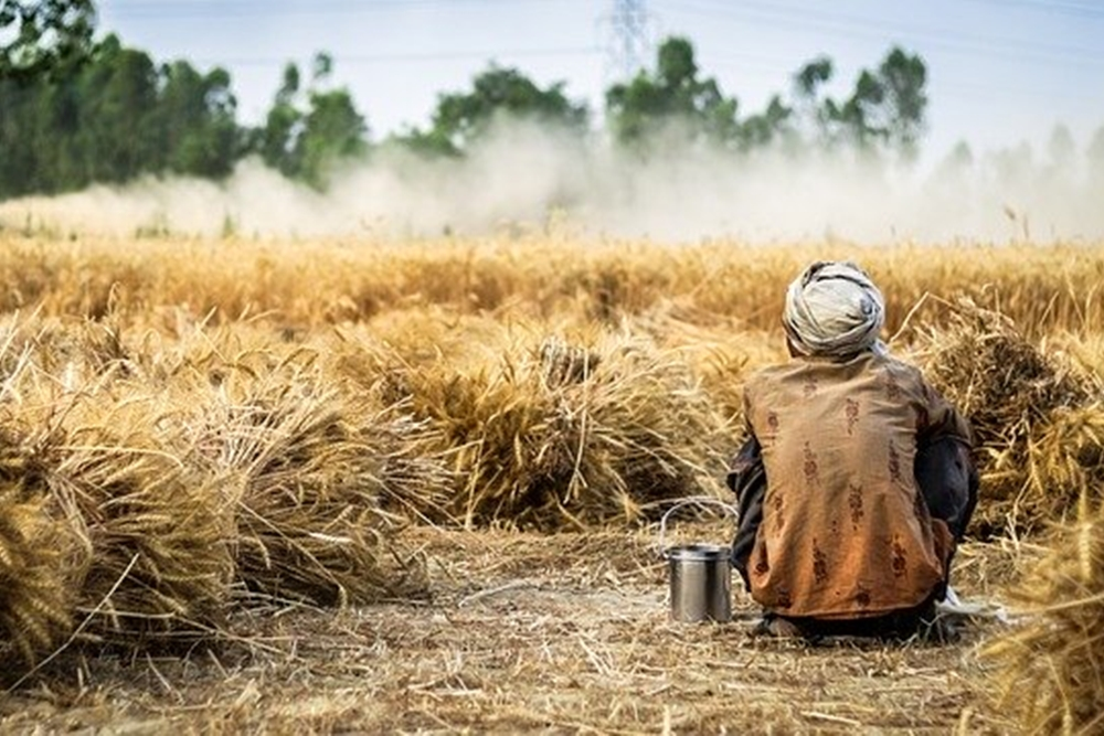 Acute Food Insecurity Soars To 5-Year High: Global Report