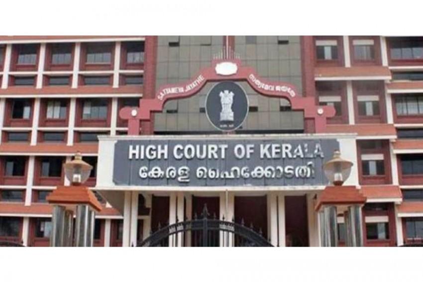 Javadekar Seeks Report On Illegal Axing Of Rosewood Trees In Kerala