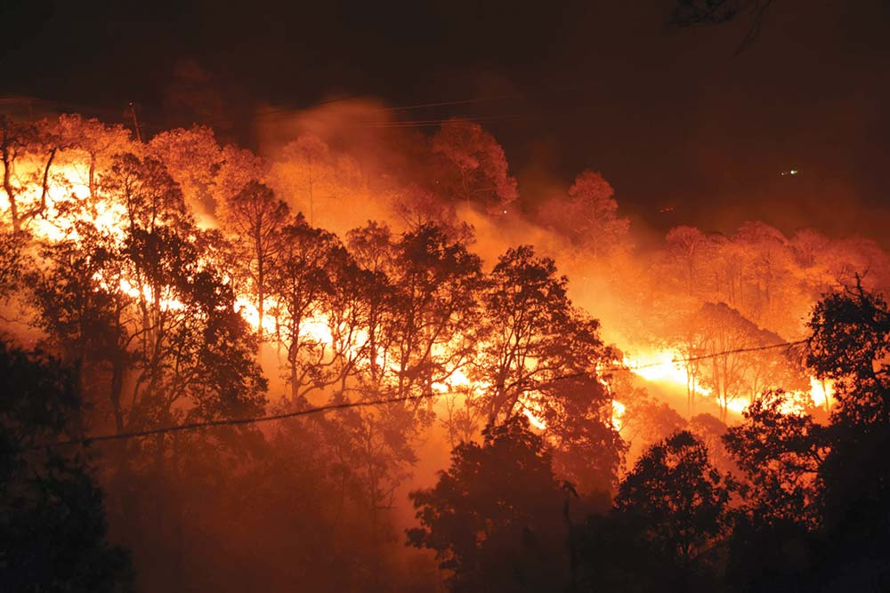 Wildfires Keep Pockets Warm