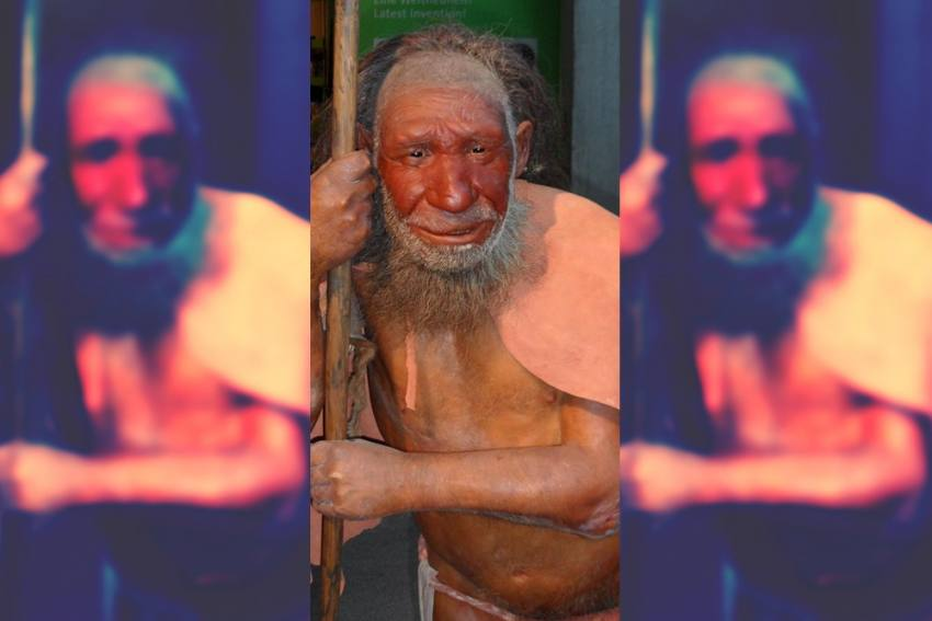 Neanderthal, Extinct 40,000 Years Ago, Have No Role In Covid Severity In South Asia: Indian Scientists