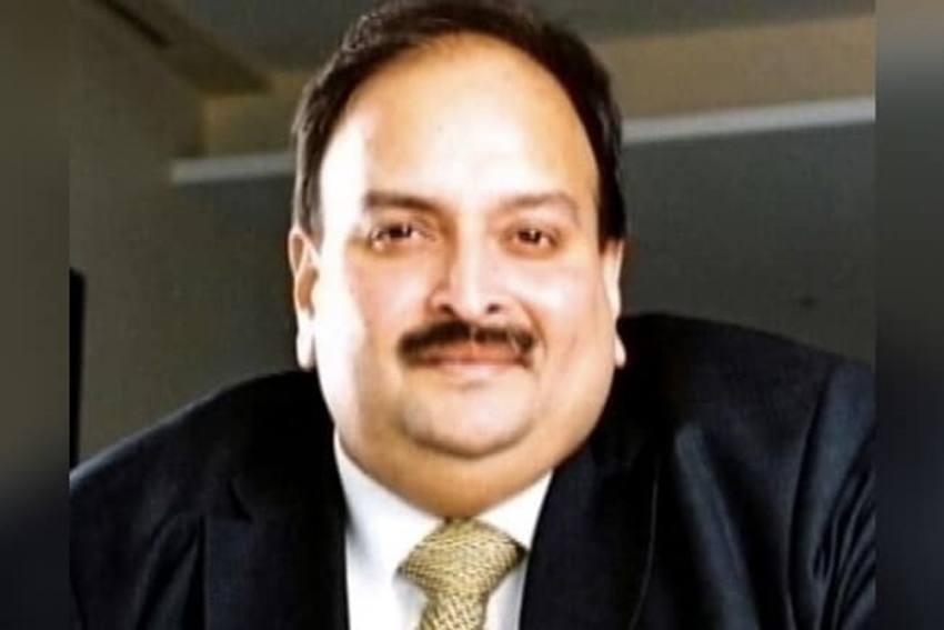 Mehul Choksi Siphoned off Rs 6,345 Crore PNB Loan Through Hong Kong Firms Showing Purchase Of Water Pearls: CBI