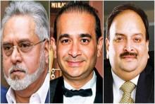 Mallya, Choksi, Nirav Modi's Assets Worth Rs 9,371 Crore Transferred To State-Run Banks