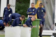 Sweden Vs Poland, Live Streaming: When And Where To Watch UEFA European Championship, Group E Match