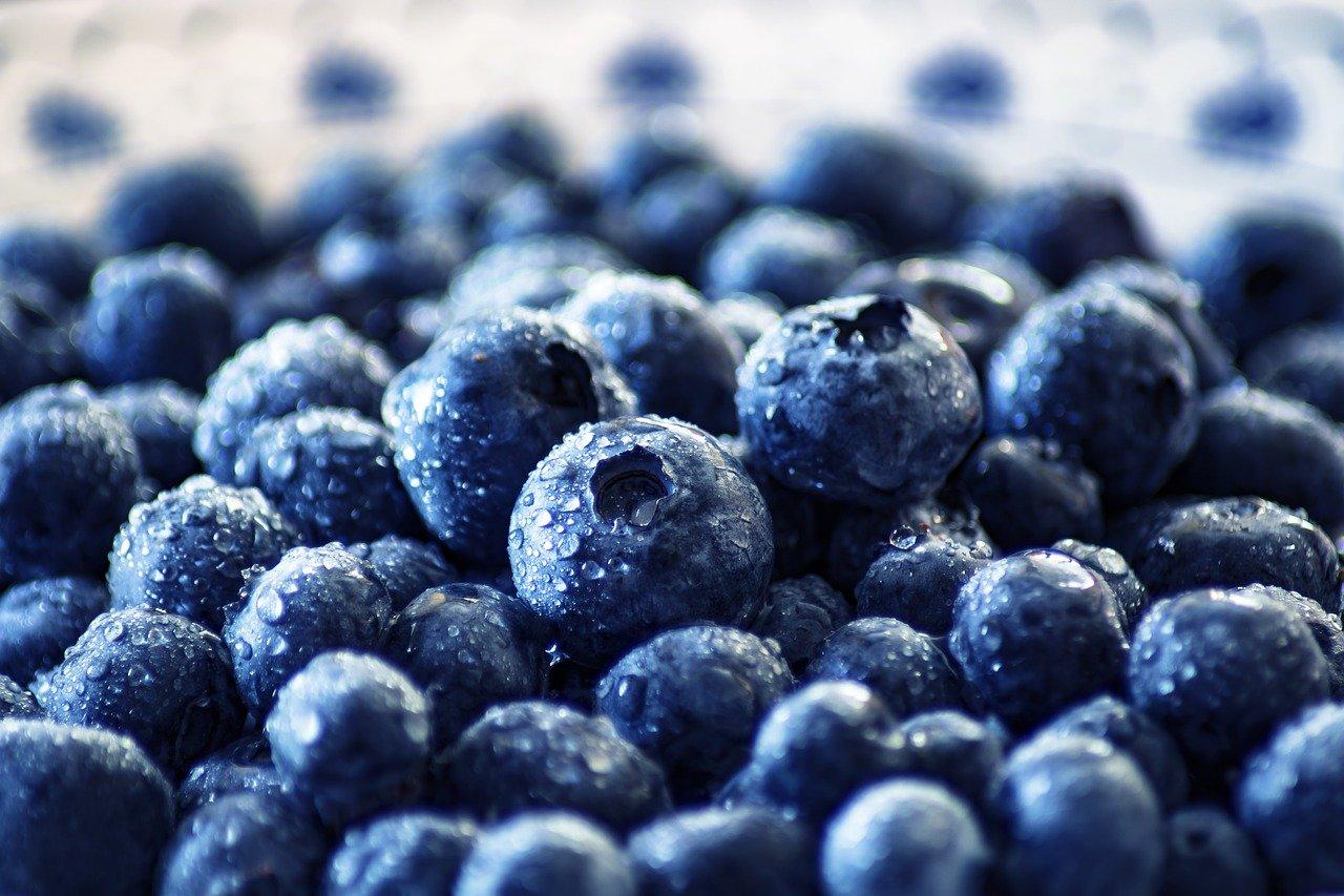 Imports Of USA Blueberries Increased Despite Pandemic: USHBC