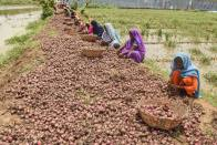 Second Covid Wave Will Have No Impact On Agriculture Sector: Niti Aayog