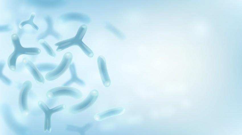 Strengthen your dairy portfolio with Chr. Hansen's well-documented probiotics