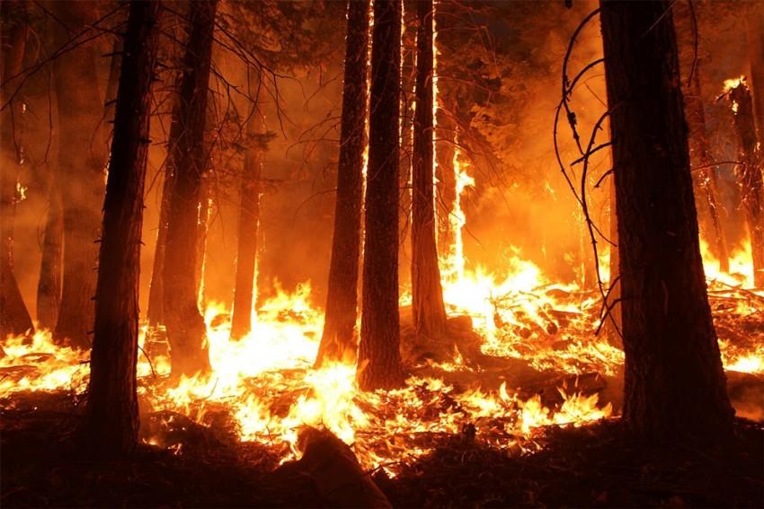 Wildfire Threatens British Columbia Village That Hit 121 F