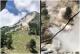 Watch: Terrifying Rockslide Caught On Tape In Himachal Pradesh Leaves 9 Dead