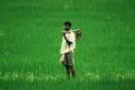 Farmer Producer Organization Scheme A Path To Farmers' Prosperity